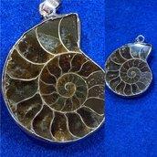 Ciondolo di Ammonite simbolo dell'energia vitale