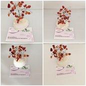 Bonsai albero della vita Acero rosso