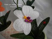 Orchidea singola ad uncinetto