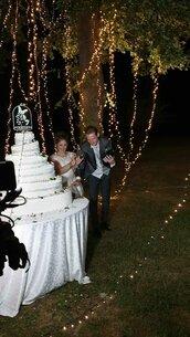 centro torta luminosi