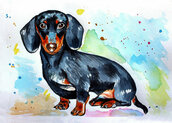 Acquerello dipinto a mano cane bassotto