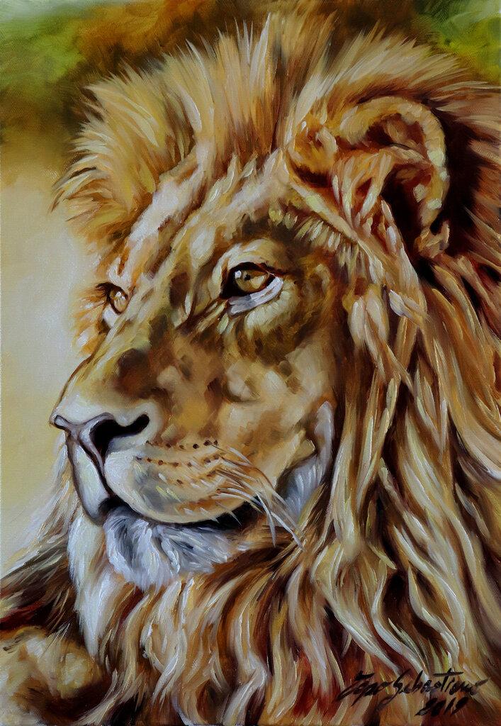 Quadro moderno Africa Leone Olio su tela 35x50 idea regalo dipinto quadri moderni di animali
