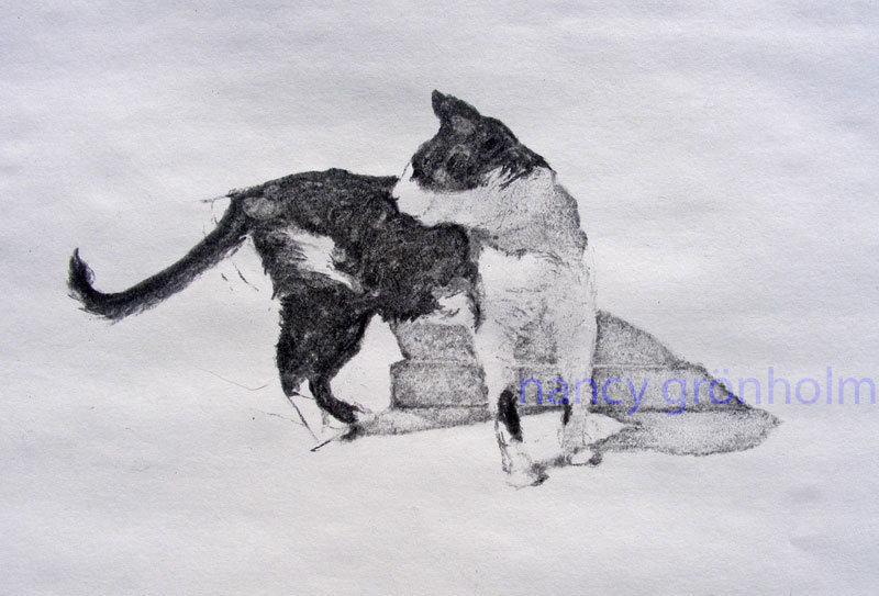 """Charcoal cat drawing - """"A study of Emil"""""""