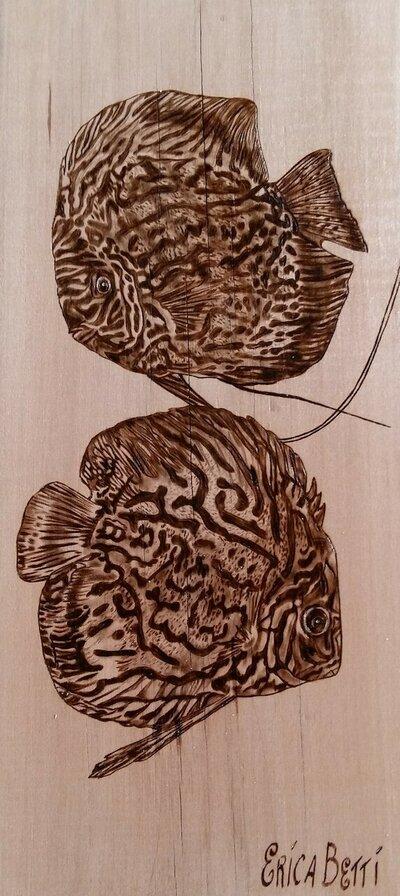 Pesci scaleni. Due bellissimi pesci scaleni pirografati a mano su fetta di pero