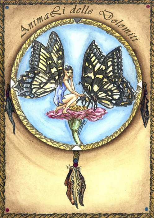 animali guida carte farfalla