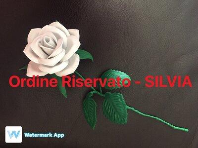 ORDINE RISERVATO - SILVIA