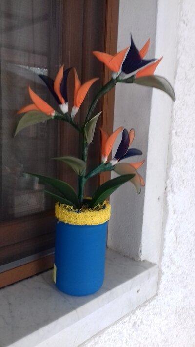 Vaso di strelizie con tre fiori
