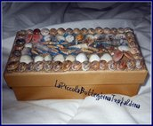 scatola conchiglie