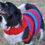 mantellina crochet per il cane