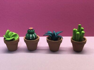 Calamite cactus fimo