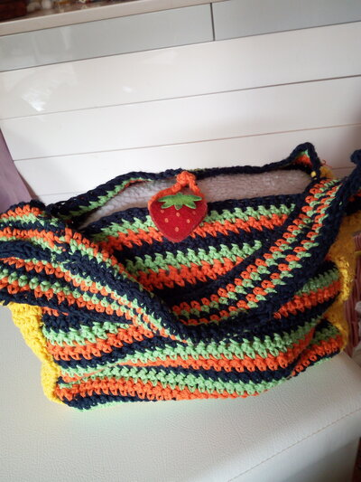 Borsa multicolor uncinetto