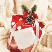 Cestino Portapanettone Natale