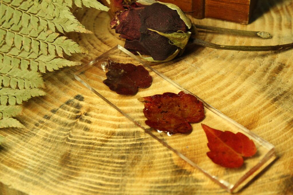 segnalibro con foglie rosse.