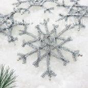 Cristalli di neve argentati