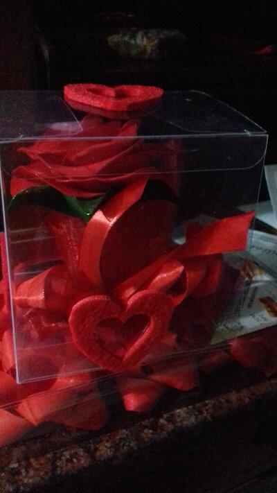 Rosa rossa per San Valentino