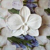 orchidea segnaposto bomboniera in gesso ceramico