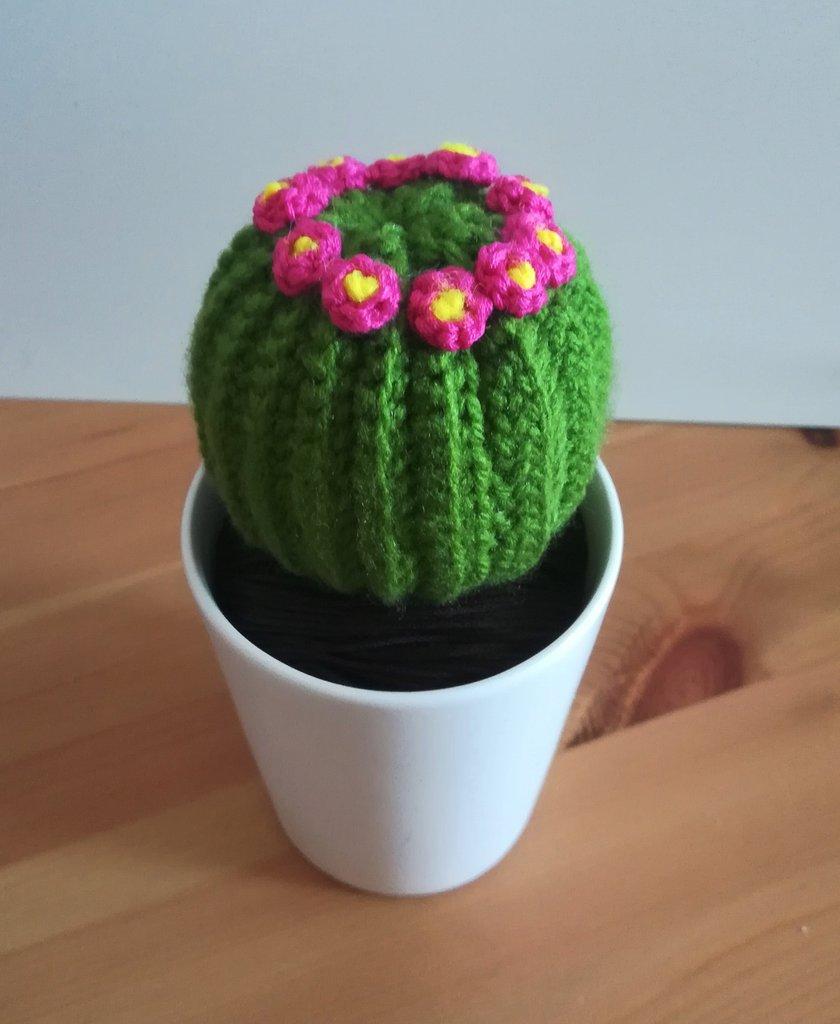 Cactus Tondo con Fiori - AMIGURUMI