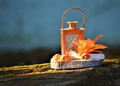 Centrotavola primavera lanterna arancione