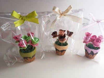 vasetti terracotta con fiori