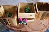 Cassettine in legno medie