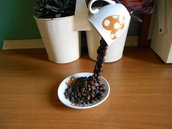 TAZZA SOSPESA  con chicchi di caffé