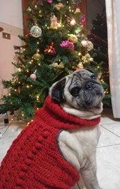 Cappottino/maglioncino rosso di lana con collo comodo ed elastico e trecce per un cane