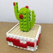 Bomboniera Cactus Rosso