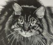 Ritratto su commissione a matita ( 1 Soggetto, animale domestico ecc) 24x33 cm