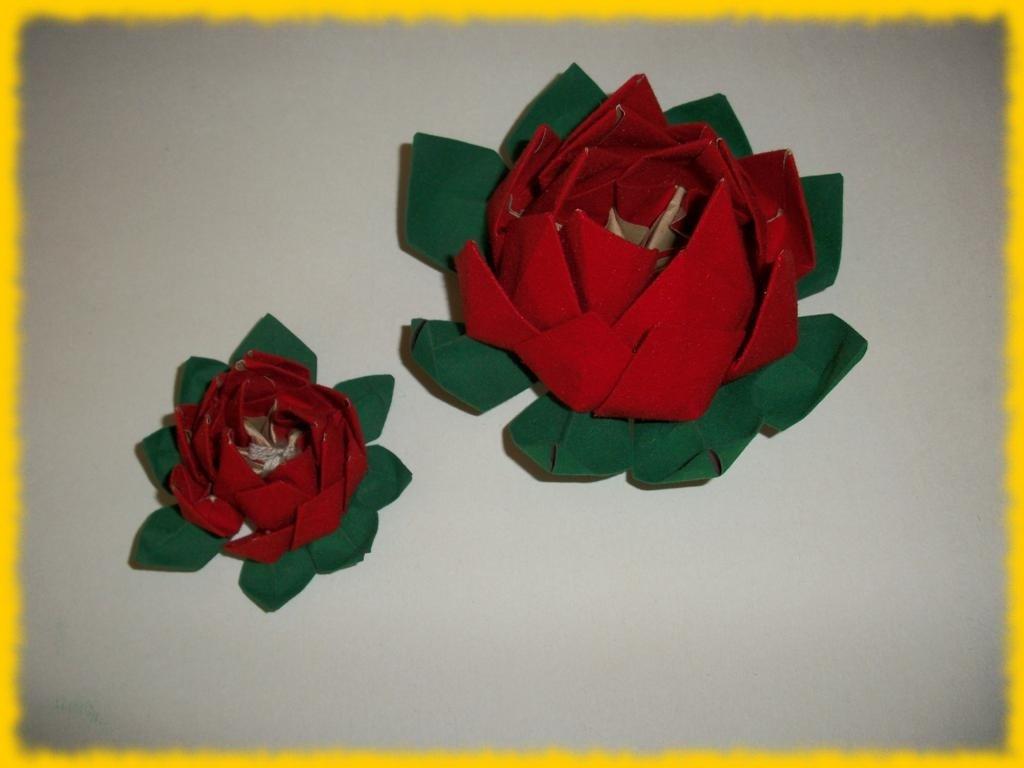 Fiore di Loto rosso