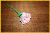 Rosellina rosa