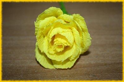 Rosellina gialla
