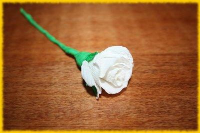 Rosellina bianca