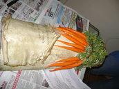 tegola carote