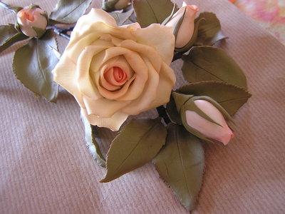 Rose su gambo
