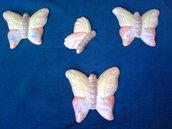 calamite farfalla