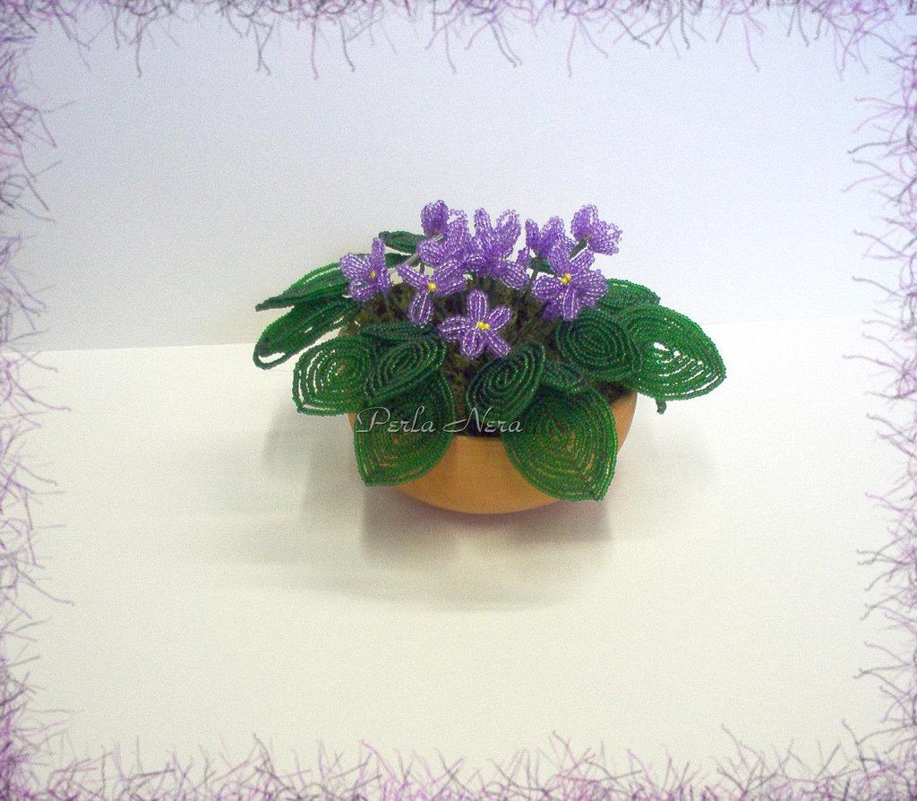 Vasetto di violette africane