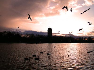 Tramonto- Natura- fotografia natura- home decor