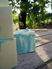 Sapone Spa Fango Verde Aloe Vera e Oli essenziali di Litsea Cubea