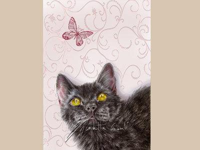 gatti ritratti