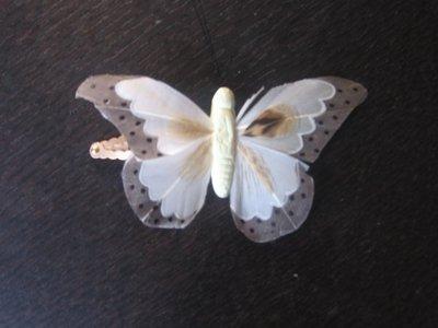 molletta con farfalla