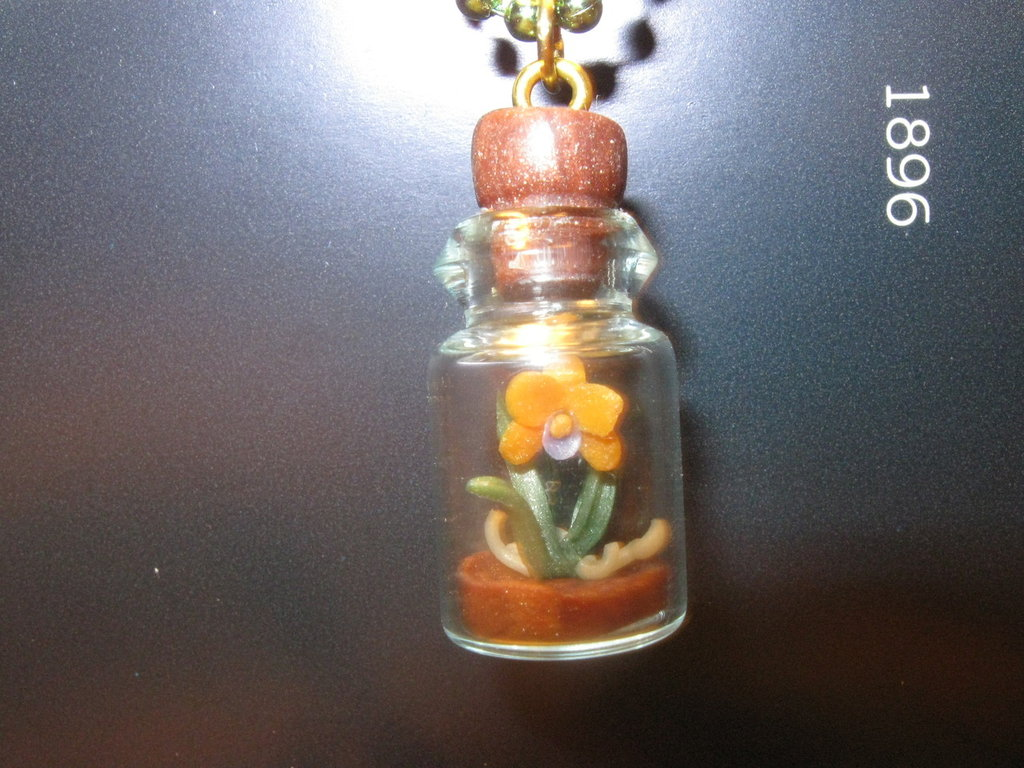 """Garden in a bottle"""