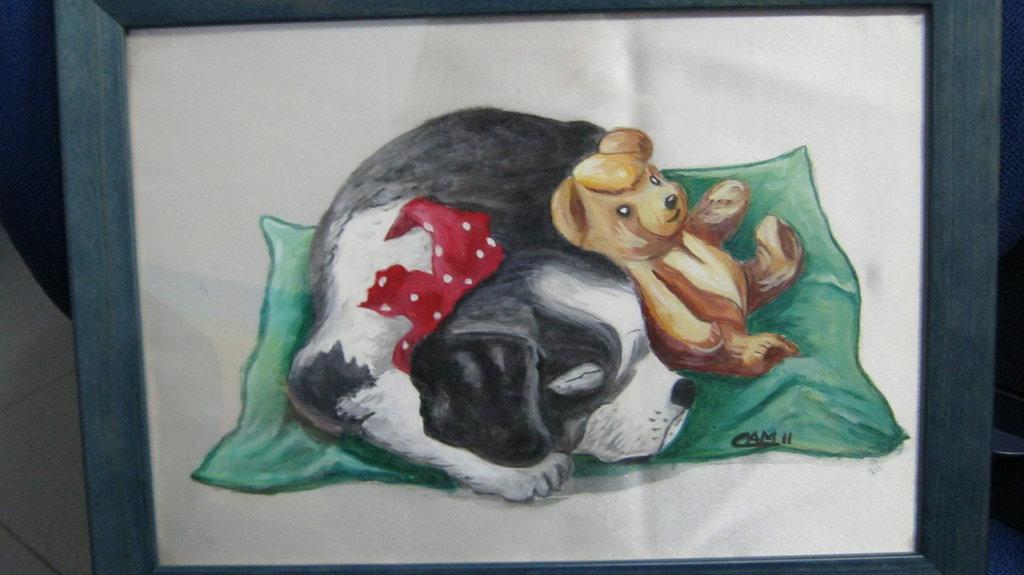 cane dormiglione