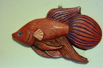 pesce rosso tropicale