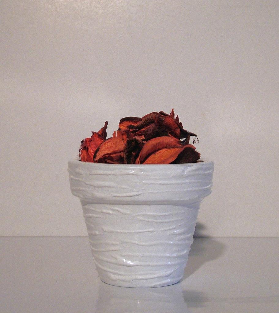 Decorare Vasi Di Terracotta.Vaso Di Terracotta Per La Casa E Per Te Decorare Casa Di Stud
