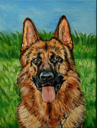 ritratto cane pastore tedesco acrilico