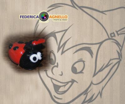 Bomboniera Laurea coccinella FIMO