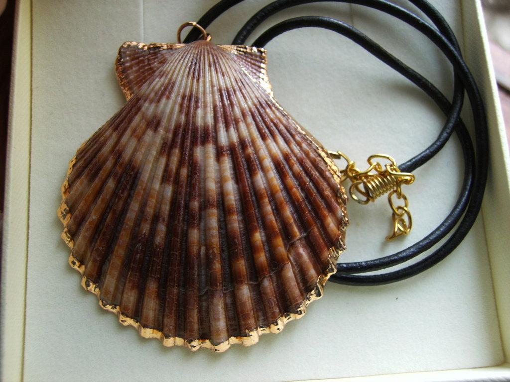 Ciondolo Conchiglia shell con cordino #16