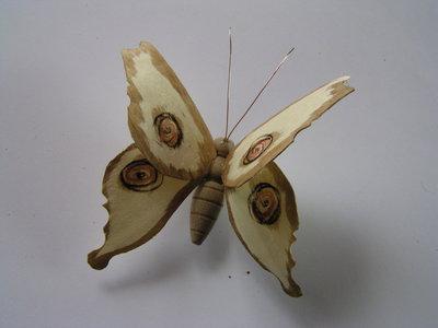 Farfalla magnetica