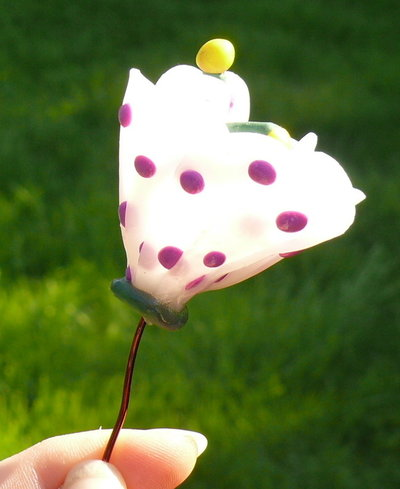 fiore a pois