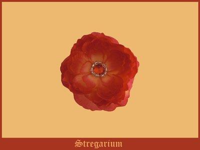 Fermacapelli (Primavera-Estate) #2